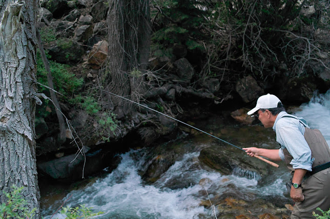 Dr. Ishigaki tenkara fishing some tight spots