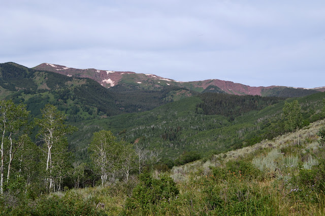 deep red ridge line above green trees