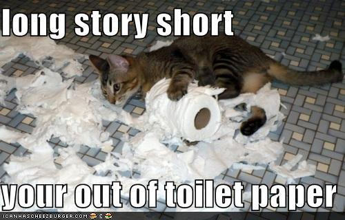 photo of cat ripping apart a roll of toilet paper
