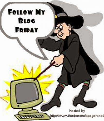 Introducing Follow My Blog Friday Follow Friday 1