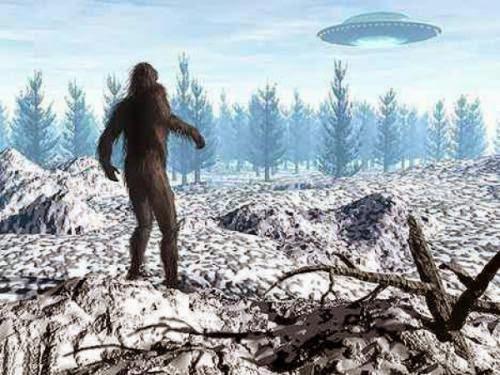 Dozens Report Ufo Sightings