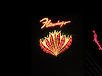 Flamingo's neon signs