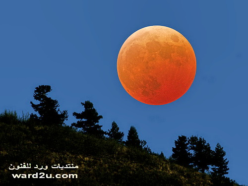 صور رائعه للقمر المنير