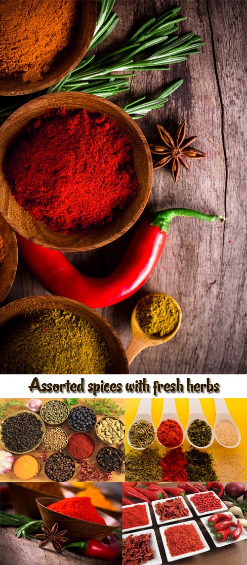 Stock Photo: Assorted spices with fresh herbs