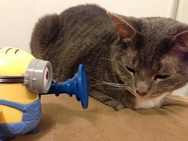 minion fart gun kitty