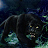 Zifeara Nightshade avatar image