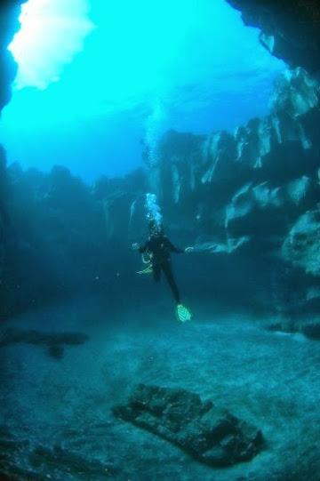 Simplon Reef (@Ecosubtenerife)