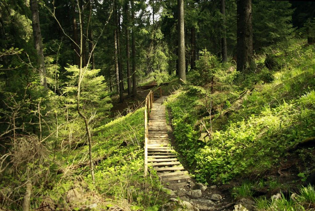 Siwy Wierch - szlak