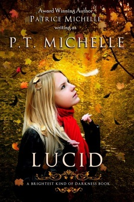 Tour Review: LUCID by P.T. Michelle