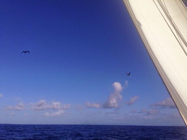il vento ai Caraibi