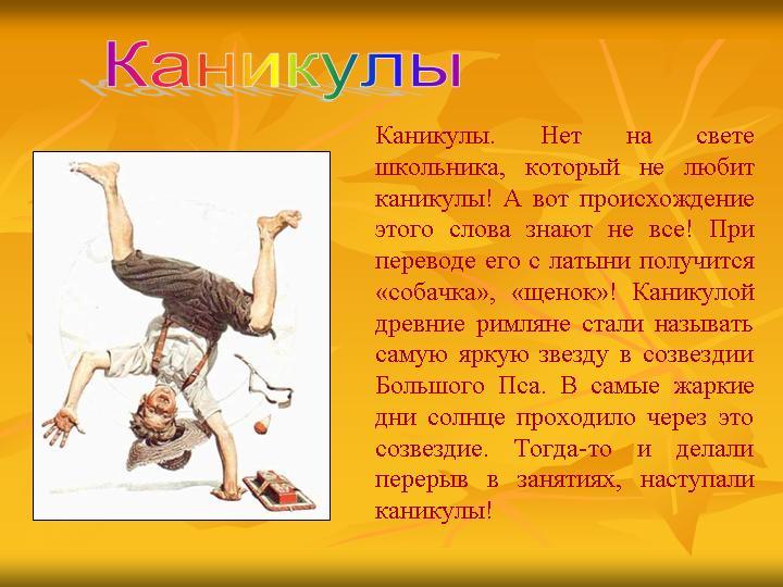 классный час на тему летние каникулы 7 класс МИШКА