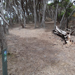 Track around Bittangabee Bay south (106750)