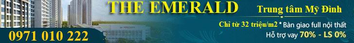 Giới thiệu dự án The Emerald Đình Thôn