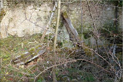 Restos del viejo molino