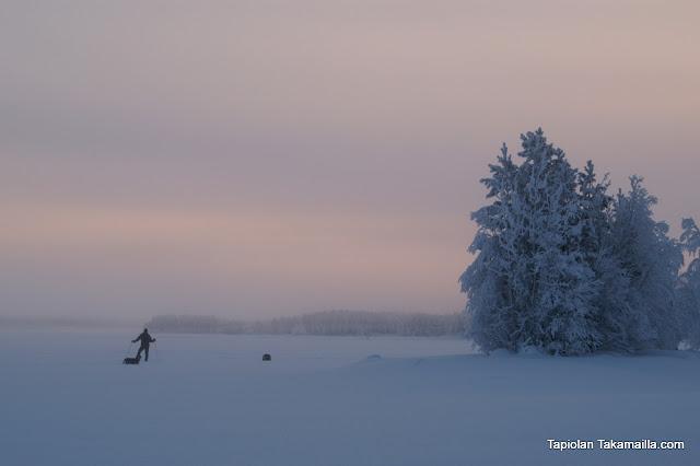 Utuinen järvi ja yksinäinen hiihtäjä