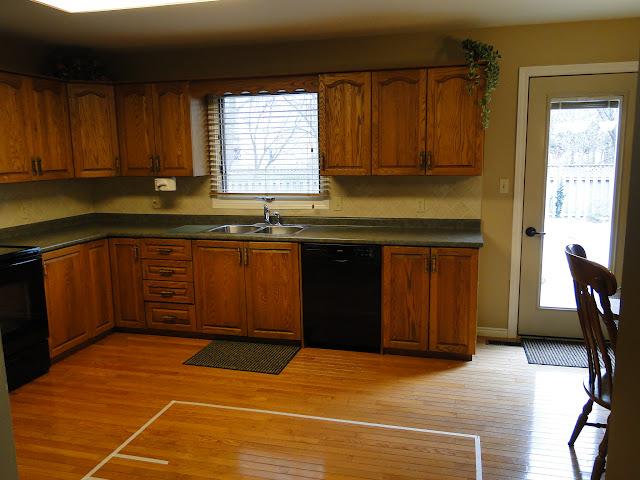 Budget Reface Kitchen Reno - Pictures