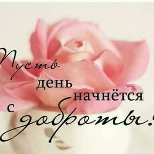 Narmin Zeynalova picture