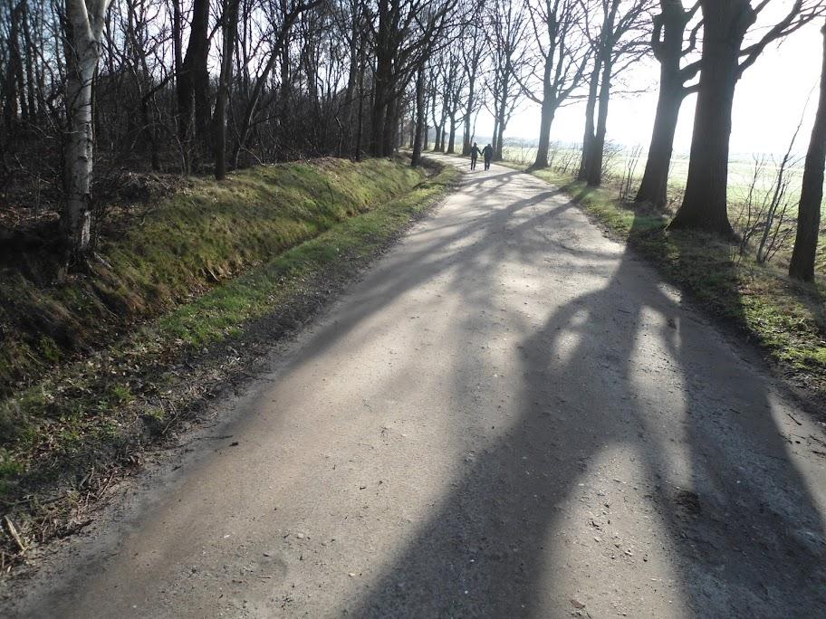 110km/80km/50km  dans le Zuid-Westhoek (NL): 9-10/03/2013 DSC01525