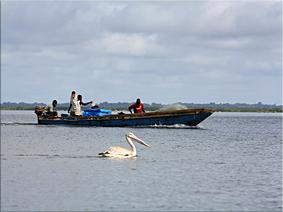 Río Casamance - Ziguinchor