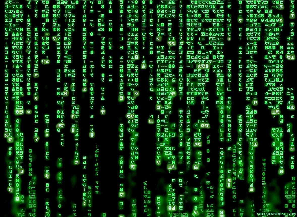 24 The Matrix Wallpapers  The Matrix Backgrounds