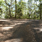 Intersection near Carnley Ave Reserve in Blackbutt Reserve (400213)