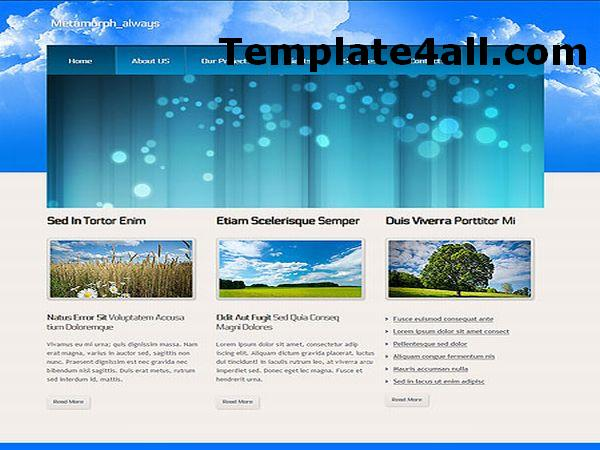 Free Sky Blue Business HTML Website Template