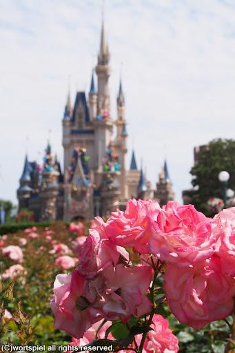 薔薇とシンデレラ城