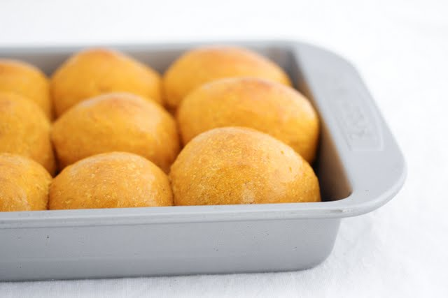 close-up photo of a rolls in a baking pan