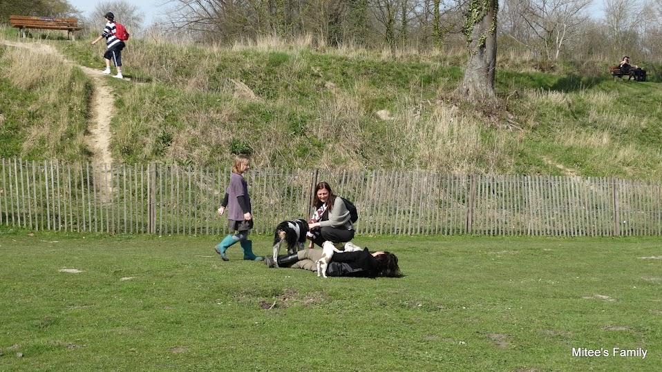 Balades canines en Nord (59)/Pas de Calais (62) - Boulogne-sur-Mer, Calais et Lille - Page 4 DSC01930