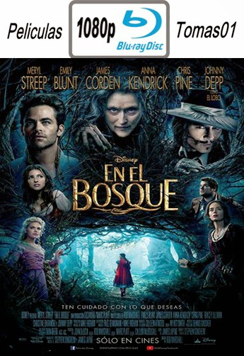 Into The Woods (En El Bosque) (2014) BRRip 1080p