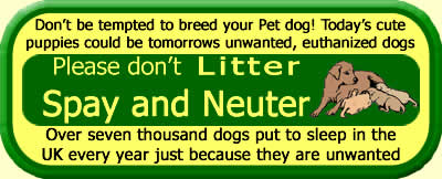 Please spay and neuter your pets. 7000 dogs are Put to sleep every year in the UK