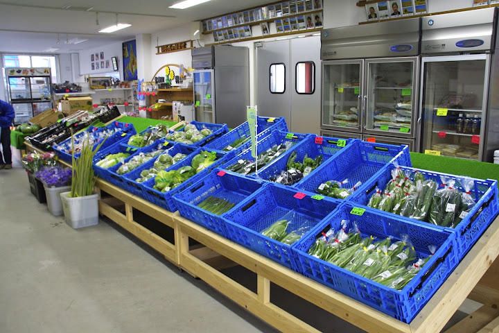 豊富な野菜たち