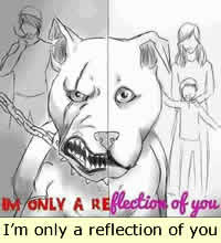 I'm only a reflection of my owner