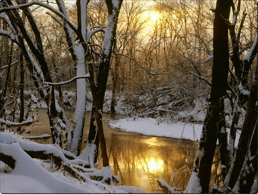 Harpeth River Winter Sunrise, Williamson County, Tennessee.jpg