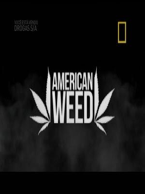 National Geographic  Drogas S.A: Corrida Contra o Tempo
