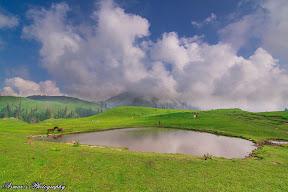 Paye Meadows