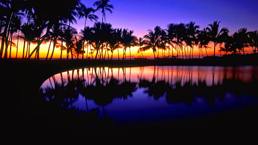 Tropical Reflections, Hawaii.jpg