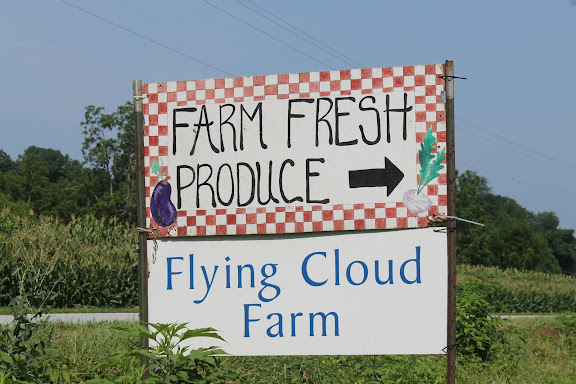 Flying Cloud Farm Honest Stand Plus Freezer Pesto Recipe
