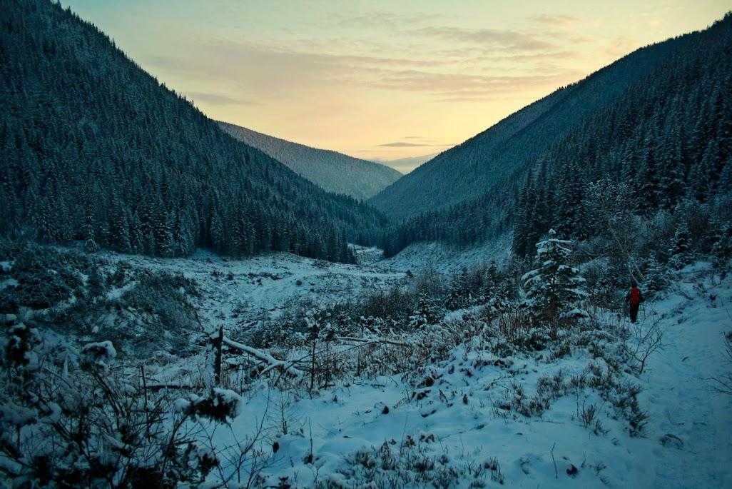 Dolina Żarska zniszczenia po lawinie