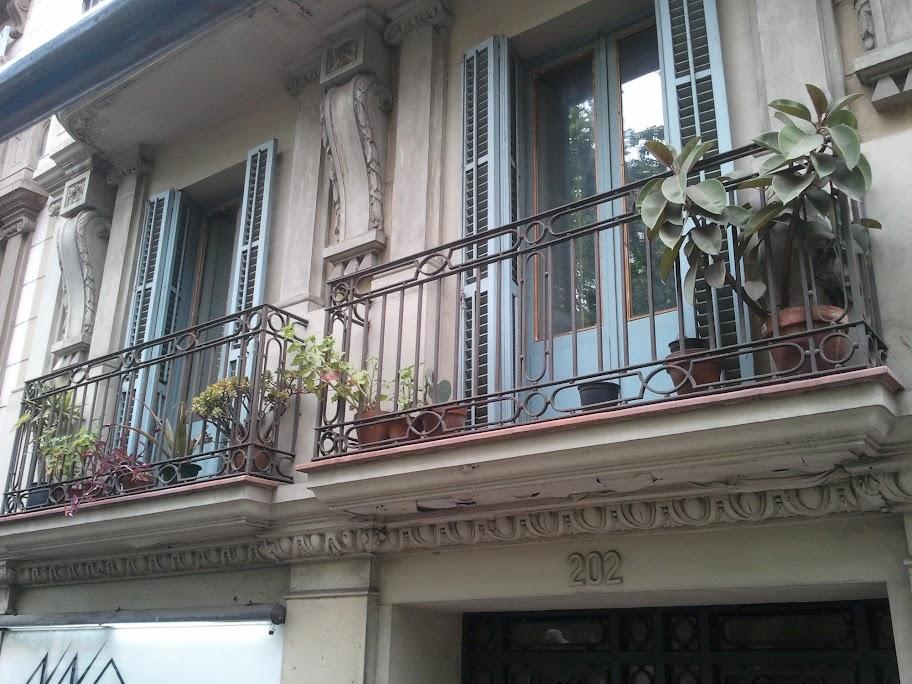 På väldigt många balkonger stod det växter