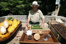 Festival del Cacao.