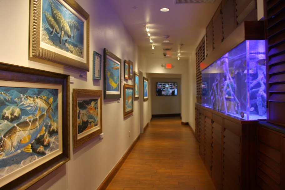 Just Let Go at Guy Harvey OutPost