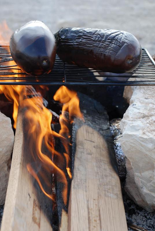 grilled eggplants