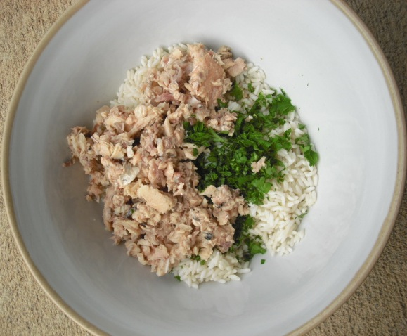 Canned salmon recipes and rice