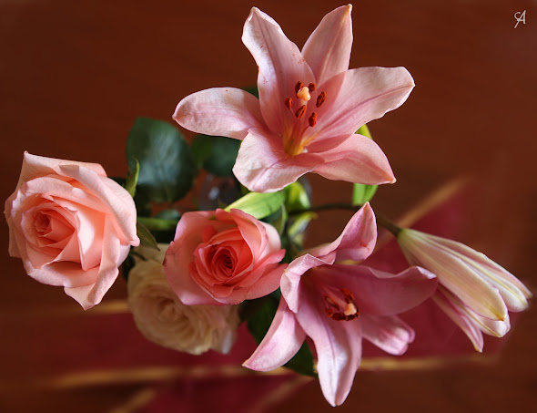 Foto de flores