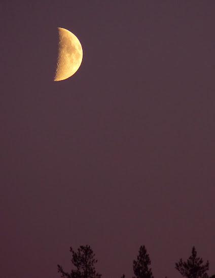 demi+lune+niiles+054.JPG