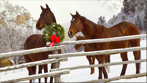 Holiday Horses.jpg