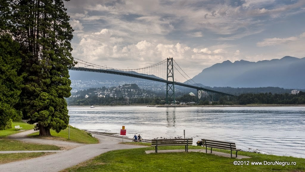 A view of the Lions Gate bridge from Stanley Park