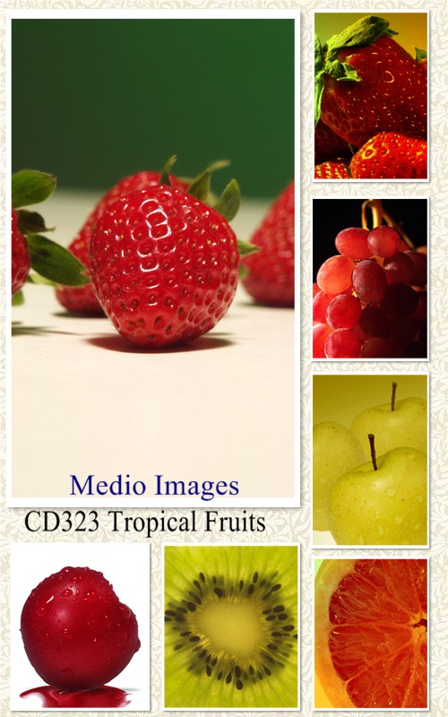 Medio Images: CD323 Tropical Fruits