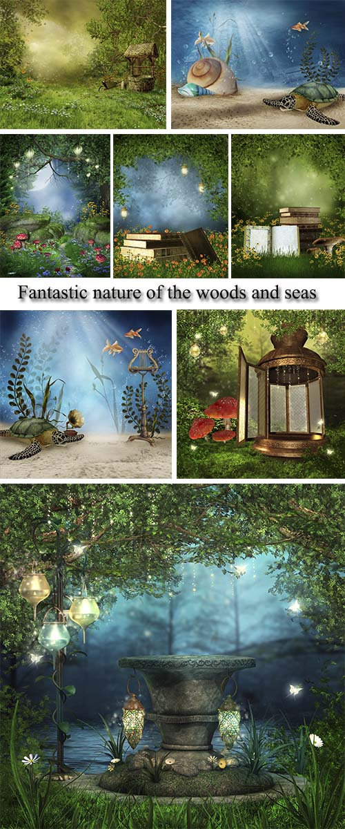 Stock Photo: Fantastic nature of the woods and seas